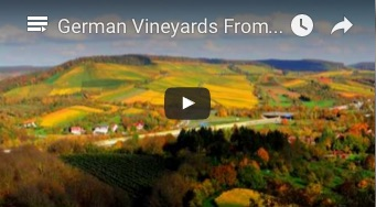 GermanVineyard